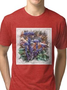 The Atlas of Dreams - Color Plate 191 Tri-blend T-Shirt