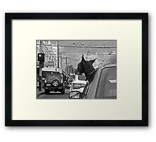 Afternoon traffic reports on WOOF- FM.  Framed Print