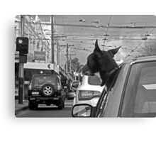 Afternoon traffic reports on WOOF- FM.  Canvas Print