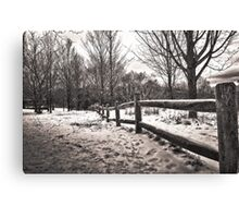 Fence In The Snow Canvas Print