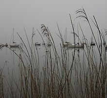 Lakes: mist by Jonesyinc