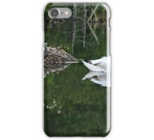 Perfect Reflections  iPhone Case/Skin