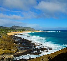Rugged side of Oahu by raymona pooler