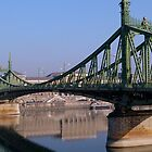 Green Metal Bridge, Budapest by Joshua McDonough