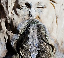 Water Fountain Detail - Bourdeaux, France by Joshua McDonough