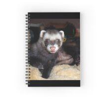 Cuddly ferret Spiral Notebook