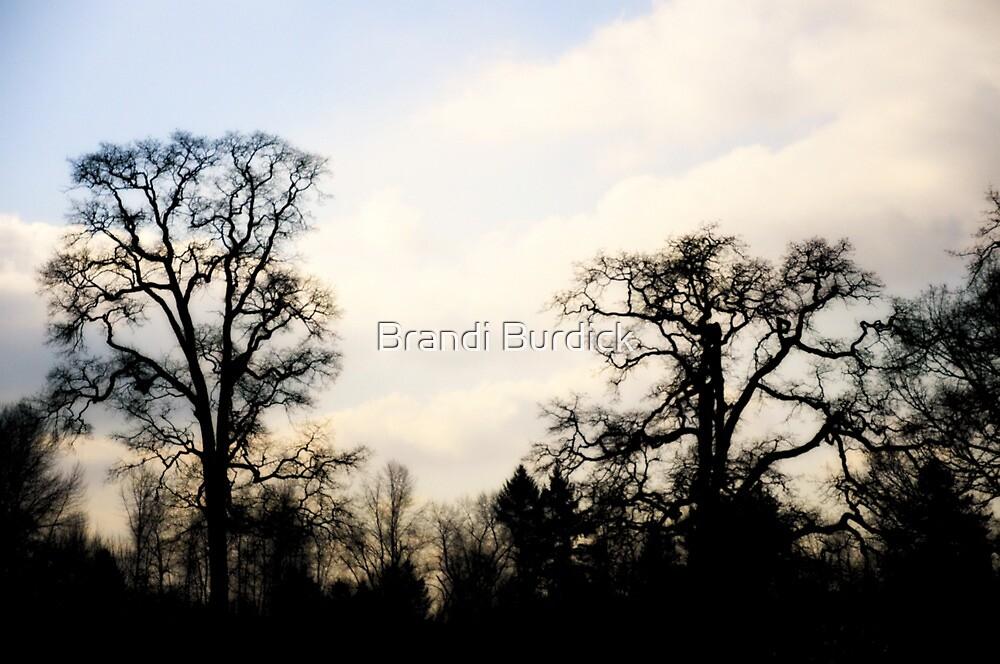 time will never wait~ by Brandi Burdick