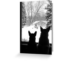 Snow Day Entertainment ~ Greeting Card