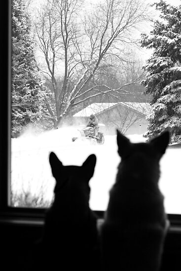 Snow Day Entertainment ~ by Renee Blake