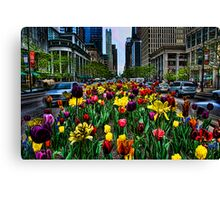Michigan Ave Tulips, Chicago Canvas Print