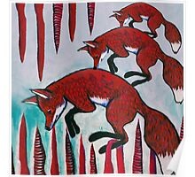 3 foxes  Poster