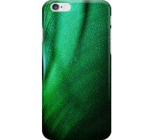 Green Two iPhone Case/Skin