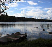 The lake  by Fairoak