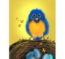 Bluebirdie, by Alma Lee Photographic Print