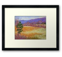 Dry grass in February Framed Print