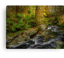 In The Hands Of His Grace Canvas Print