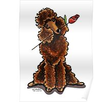 Chocolate Poodle Sweetheart Poster