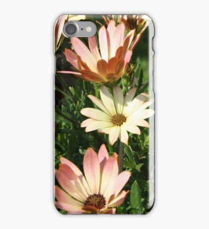 Peach Daisies iPhone Case/Skin