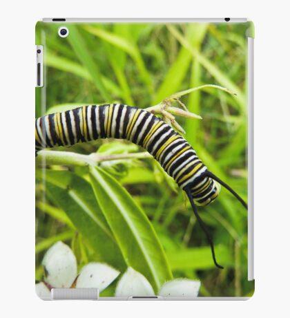 Stripey iPad Case/Skin