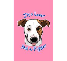 I'm a Lover, Not a Fighter Photographic Print