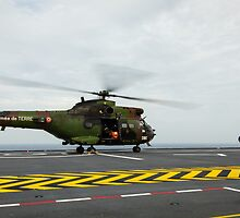 Eurocopter AS332 Super Puma Helicopter by Joshua McDonough Photography