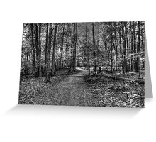 Forest 2 Greeting Card