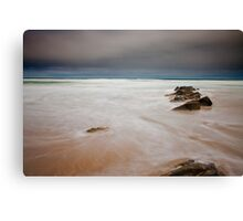 Wilderniss Beach Canvas Print