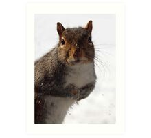 Baby, it's cold outside !  Art Print
