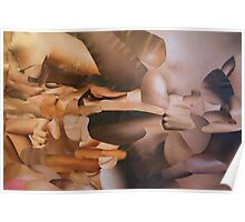 Flesh Tone Landscape Collage Poster