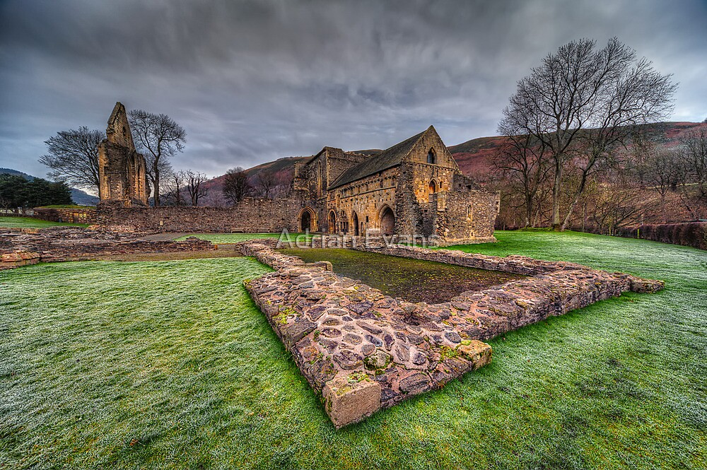 Abbey Ruin by Adrian Evans