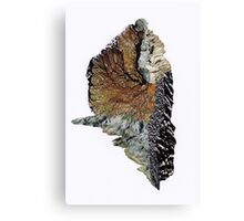 Nature No. 1 Canvas Print