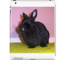 Netherland Dwarf iPad Case/Skin