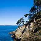 Carmel Bay from Point Lobos by Yukondick