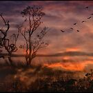 Lake Hiawatha by Jillian Merlot