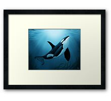 """The Dreamer"" ~ Orca • Killer Whale Framed Print"