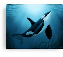 """The Dreamer"" ~ Orca • Killer Whale Canvas Print"