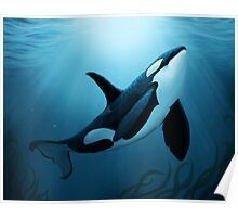 """The Dreamer"" ~ Orca • Killer Whale Poster"