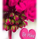 hot pink valentine by picketty