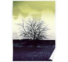 Sun Shone Through  Poster
