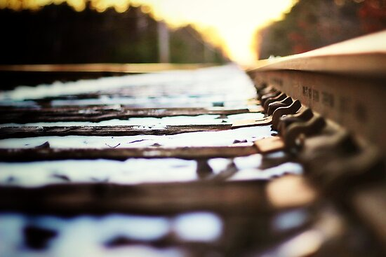 Stay on Track by RogerEchauri