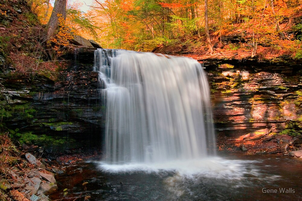 Warm Autumn Sunlight on the Mist of Harrison Wright Falls by Gene Walls