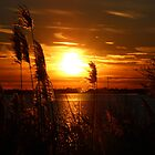 Sunset on the East End of Long Island by RogerEchauri