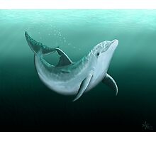 Riversoul ~ Bottlenose Dolphin Photographic Print