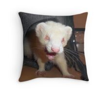 Albino Ferret, Macro Throw Pillow