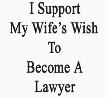 I Support My Wife's Wish To Become A Lawyer by supernova23