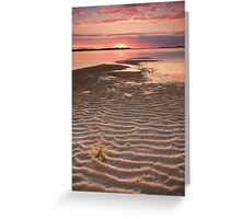 Tumbleweed on the Snowy River Estuary Greeting Card