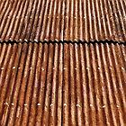 Rusty Roof © by Ethna Gillespie