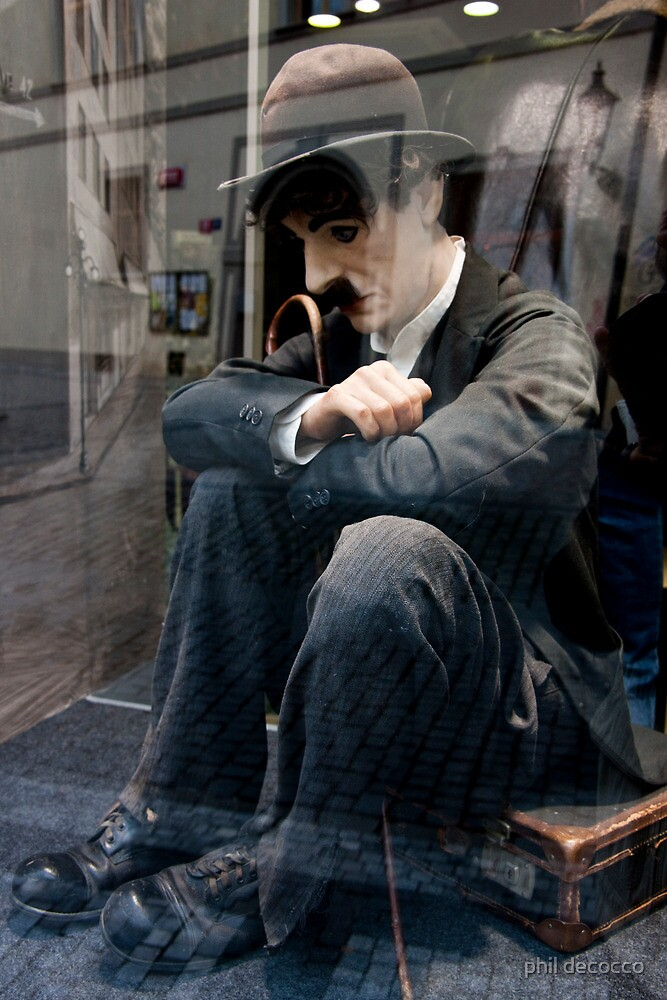 Charlie In Reflection by phil decocco