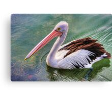 Pelican circle Canvas Print