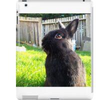 Netherland Dwarf in Summer Garden iPad Case/Skin